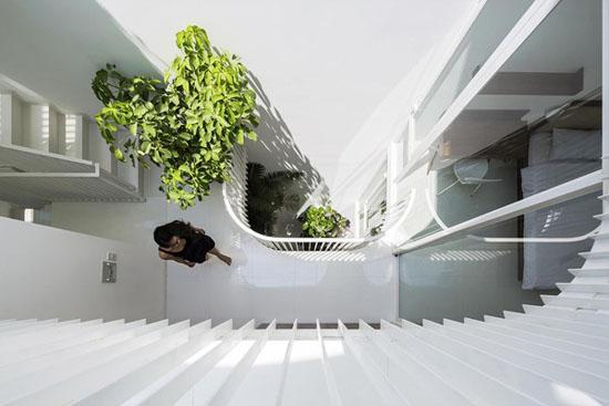 Cùng với giếng trời, cây xanh tạo ra điểm nhấn cho ngôi nhà trắng.