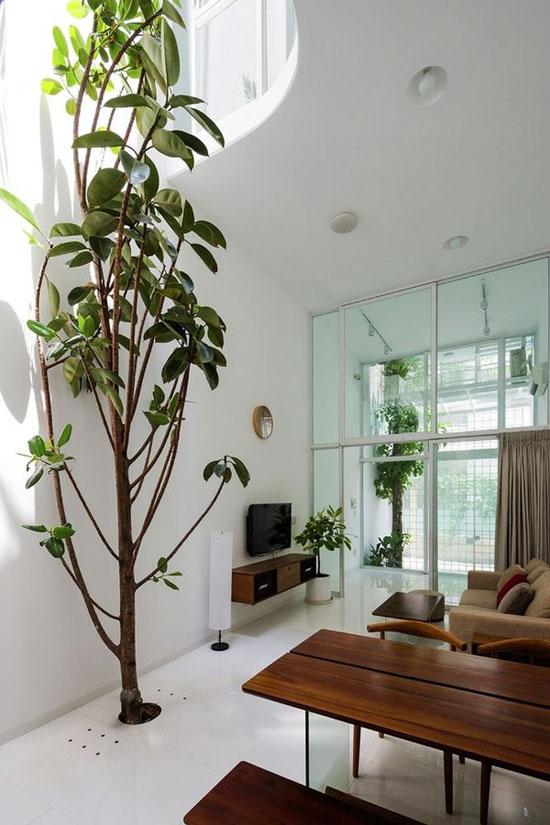 Tầng trệt là không gian của phòng khách, phòng ăn, phòng bếp.